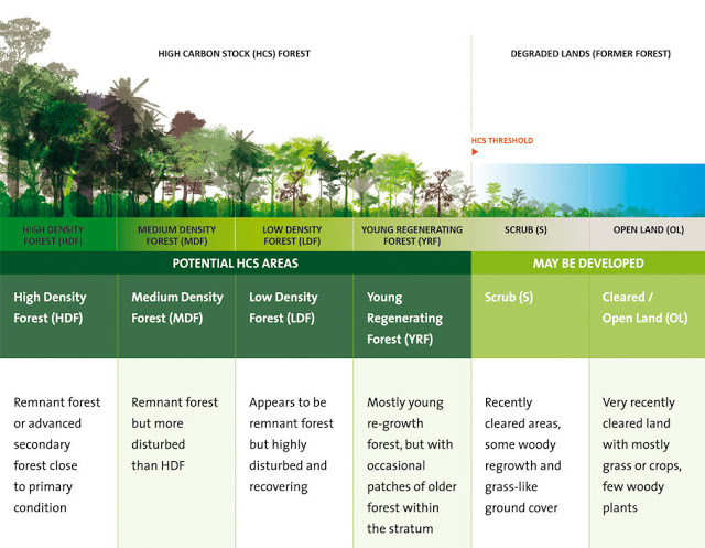 klasifikasi-hutan HCSA